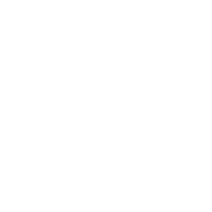 Entrepids eCommerce experts since 1999